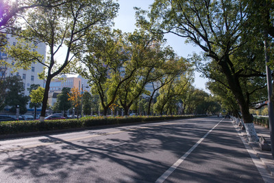 宁波市望京路改造工程
